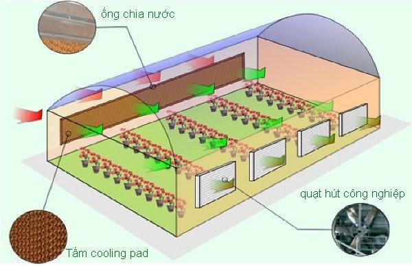 hệ thống làm mát nhà xưởng